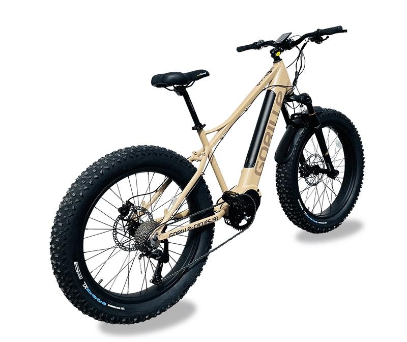 Fat-Bike non homologué